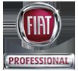 FiatProfessional-logo