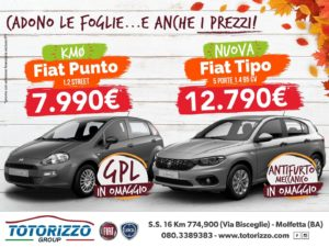 4x3_punto_tipo_totorizzo_group_03_10_2018-01