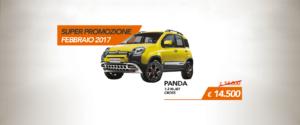 panda-gialla