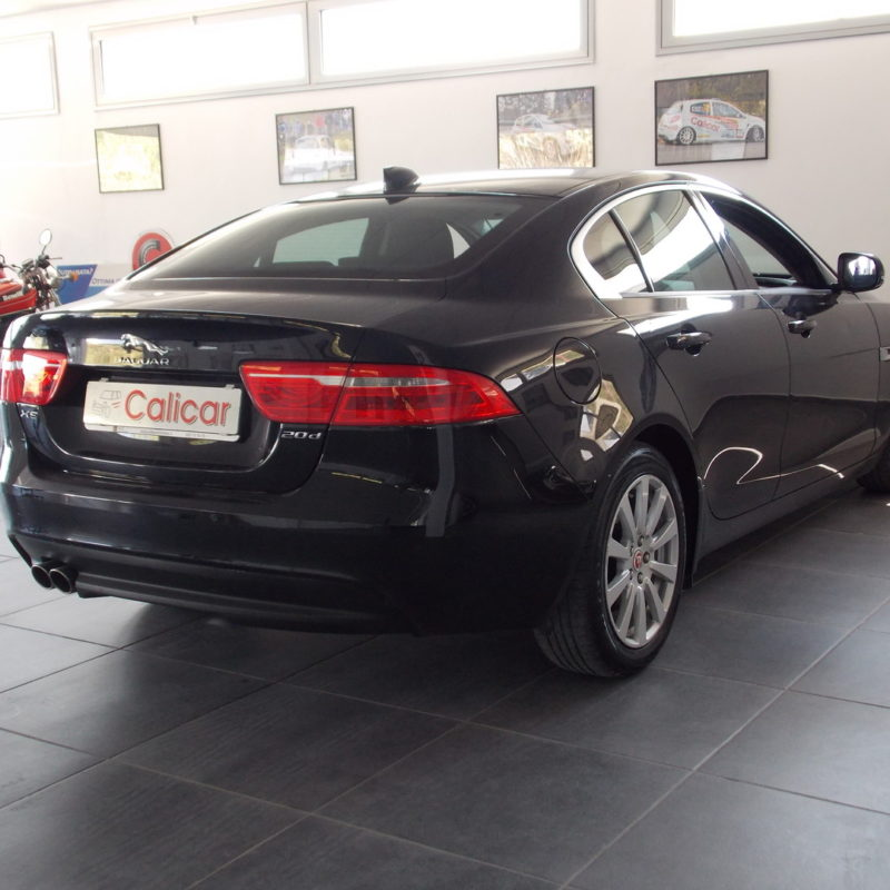 jaguar-20