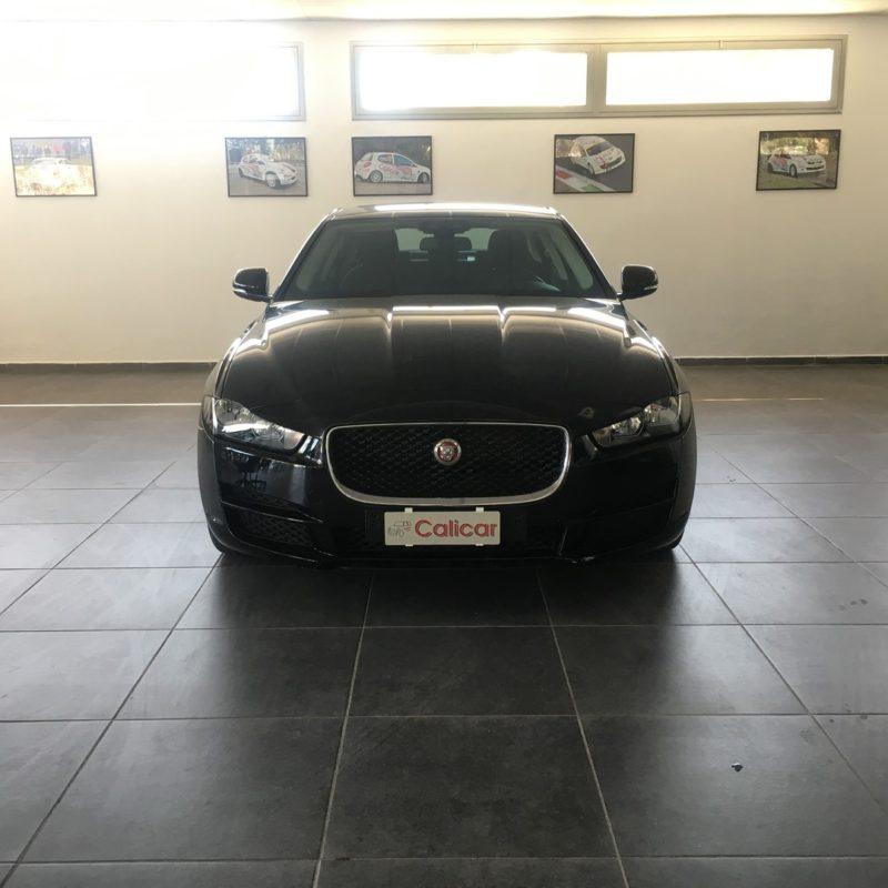 jaguar-22