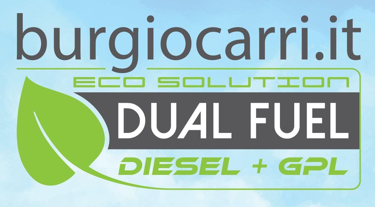 logo-ddf_burgio