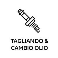 tagliando-e-cambio-olio-officina-dielle-auto-borgaro-torinese