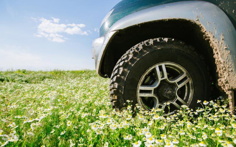 Frühlingscheck Ihres Autos bei Autoplus in Eppan, Bozen, Südtirol. Umfassende und genaue Kontrollen, sowie Hygienisierung der Klimaanlage und Reifenlagerung und Reifenwechsel.