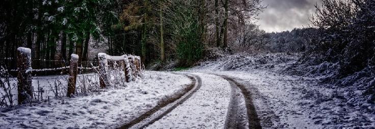 pneumatici invernali cosa sapere